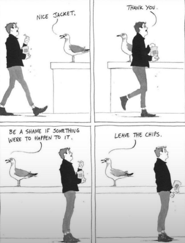 Thumbnail of Bird threatens man