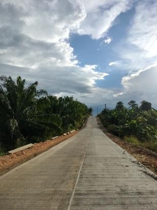 Thumbnail of Road